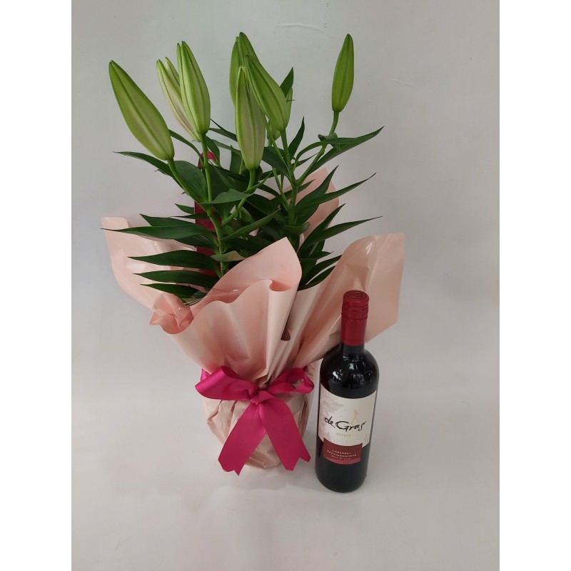 204 Lírio Branco ou Rosa +  Vinho Tinto Cabernet Sauvignon