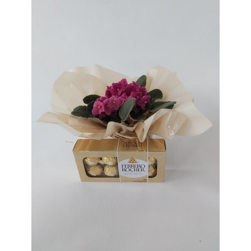 217 Vaso Mini Violeta e Chocotale Ferrero Rocher
