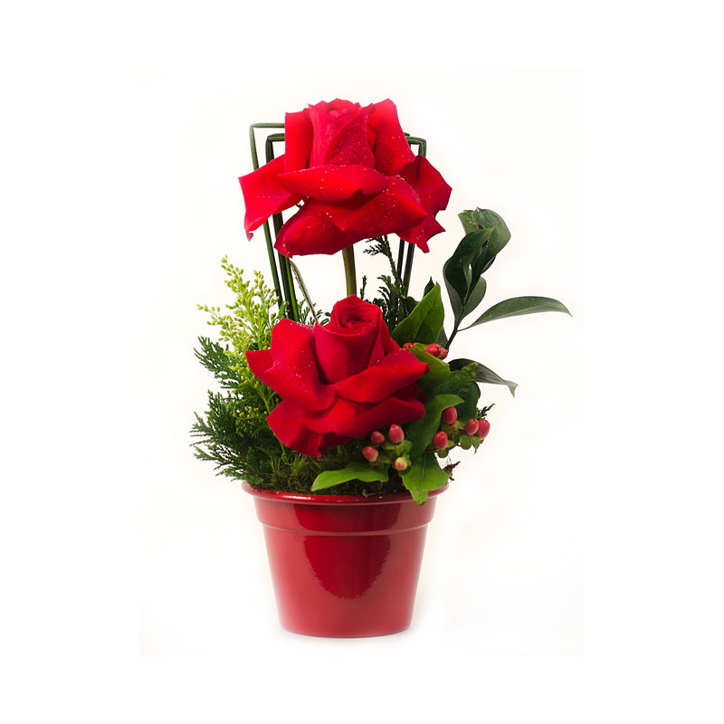 128 Arranjo de Rosas Vermelha pequeno