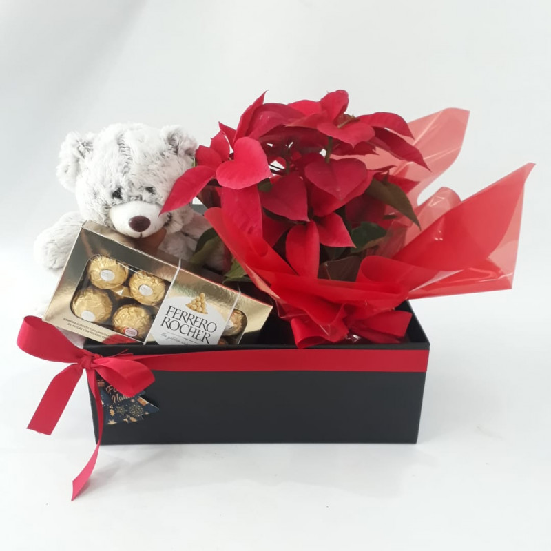 503 Caixa Personalizada + Urso + Chocolate