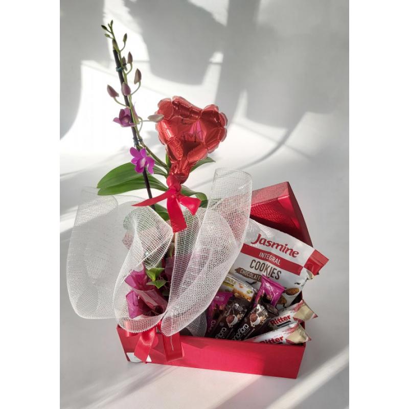 518 Orquídea na caixa Personalizada com produtos Integrais